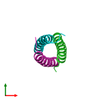 PDB 1zij coloured by chain and viewed from the top.