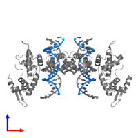PDB 2a07 contains 2 copies of 5'-D(*AP*AP*CP*TP*AP*TP*GP*AP*AP*AP*CP*AP*AP*AP*TP*TP*TP*TP*CP*CP*T)-3' in assembly 1. This DNA molecule is highlighted and viewed from the front.