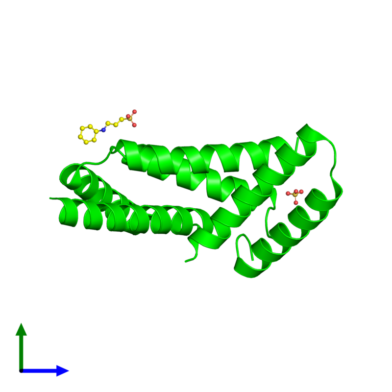 <div class='caption-body'><ul class ='image_legend_ul'>The deposited structure of PDB entry 2a26 coloured by chemically distinct molecules and viewed from the side. The entry contains: <li class ='image_legend_li'>3 copies of Calcyclin-binding protein</li><li class ='image_legend_li'>2 non-polymeric entities<ul class ='image_legend_ul'><li class ='image_legend_li'>1 copy of SULFATE ION</li><li class ='image_legend_li'>1 copy of 3-CYCLOHEXYL-1-PROPYLSULFONIC ACID</li></ul></li></div>