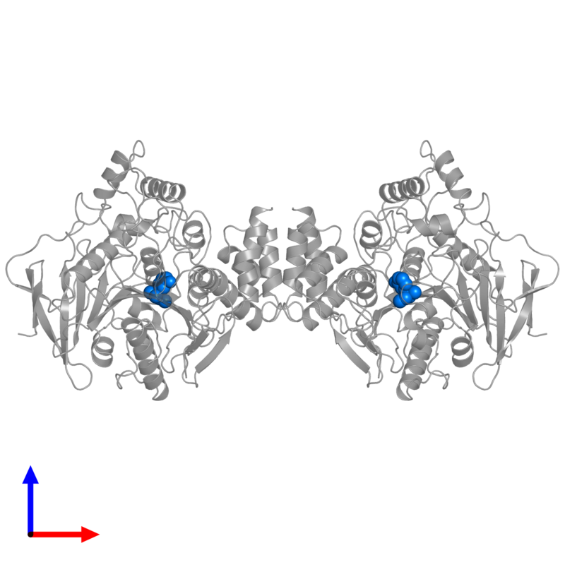 <div class='caption-body'>PDB entry 2ack contains 2 copies of EDROPHONIUM ION in assembly 1. This small molecule is highlighted and viewed from the front.</div>
