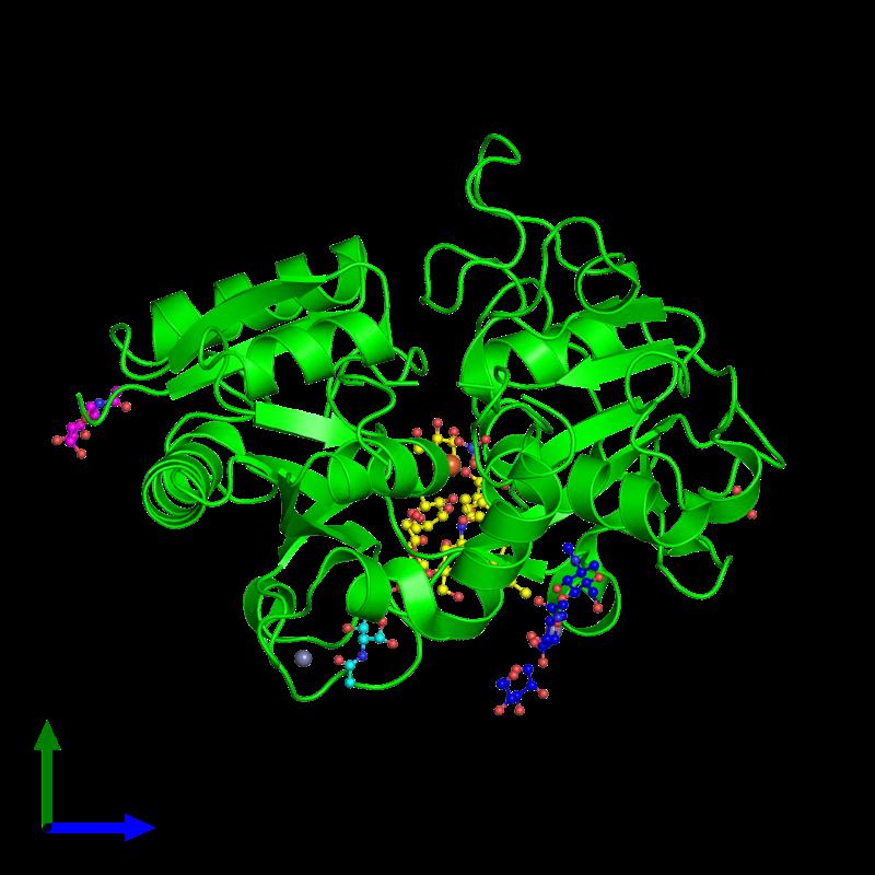 <div class='caption-body'><ul class ='image_legend_ul'>The deposited structure of PDB entry 2ays coloured by chemically distinct molecules and viewed from the side. The entry contains: <li class ='image_legend_li'>1 copy of Lactotransferrin</li><li class ='image_legend_li'>6 non-polymeric entities<ul class ='image_legend_ul'><li class ='image_legend_li'>1 copy of 2-acetamido-2-deoxy-beta-D-glucopyranose</li><li class ='image_legend_li'>1 copy of 2-acetamido-2-deoxy-alpha-D-galactopyranose</li><li class ='image_legend_li'>2 copies of ZINC ION</li><li class ='image_legend_li'>1 copy of FE (III) ION</li><li class ='image_legend_li'>1 copy of CARBONATE ION</li><li class ='image_legend_li'>1 copy of SULFATE ION</li></ul></li></div>