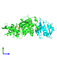 PDB 2btf coloured by chain and viewed from the side.