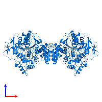 PDB 2c5f contains 2 copies of Acetylcholinesterase in assembly 1. This protein is highlighted and viewed from the front.