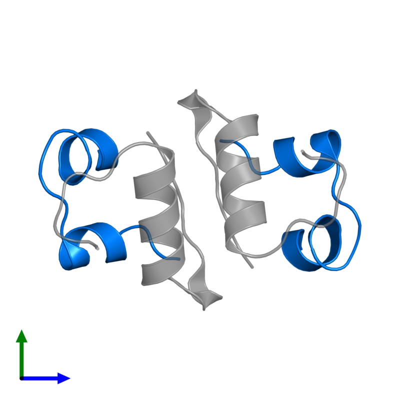 <div class='caption-body'>PDB entry 2c8r contains 2 copies of Insulin A chain in assembly 1. This protein is highlighted and viewed from the front.</div>