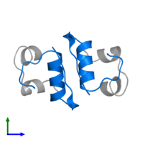 PDB 2c8r contains 2 copies of Insulin B chain in assembly 1. This protein is highlighted and viewed from the front.
