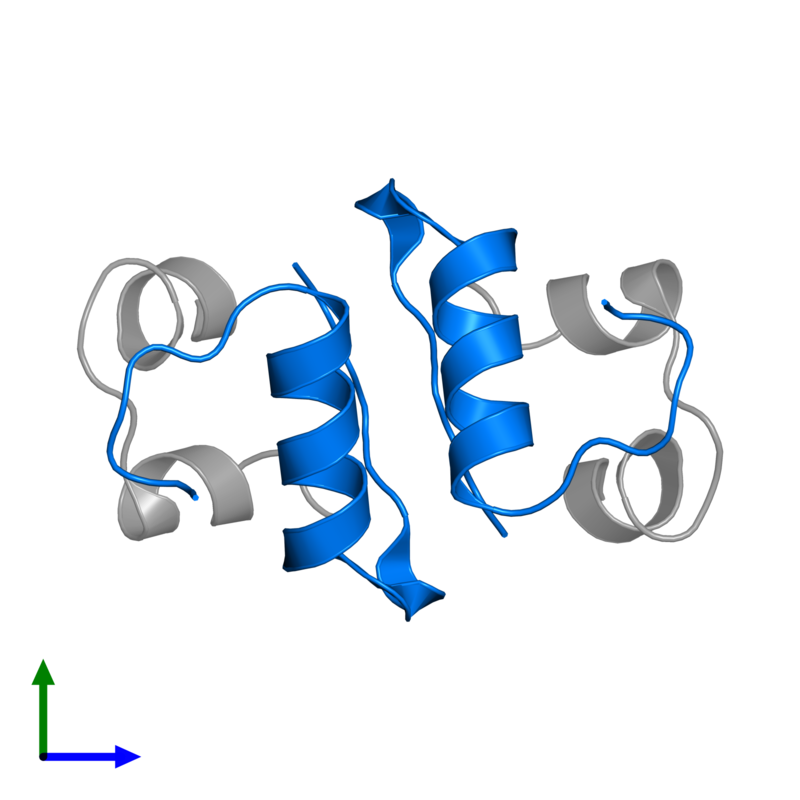 <div class='caption-body'>PDB entry 2c8r contains 2 copies of Insulin B chain in assembly 1. This protein is highlighted and viewed from the front.</div>