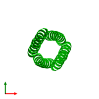 Tetrameric assembly 1 of PDB entry 2cce coloured by chemically distinct molecules and viewed from the top.