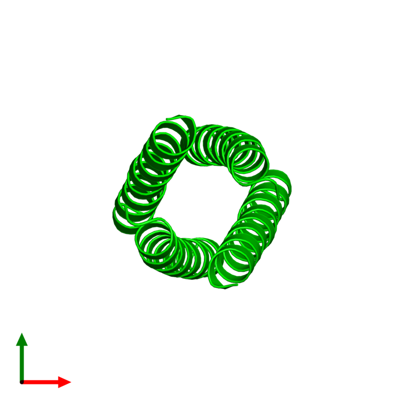 <div class='caption-body'><ul class ='image_legend_ul'> Tetrameric assembly 1 of PDB entry 2cce coloured by chemically distinct molecules and viewed from the top. This assembly contains:<li class ='image_legend_li'>4 copies of General control transcription factor GCN4</li></ul></div>
