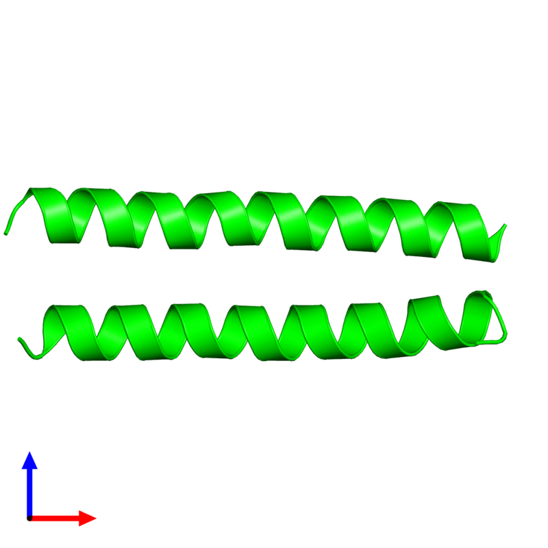 <div class='caption-body'><ul class ='image_legend_ul'>The deposited structure of PDB entry 2cce coloured by chemically distinct molecules and viewed from the front. The entry contains: <li class ='image_legend_li'>2 copies of General control transcription factor GCN4</li><li class ='image_legend_li'>There are no non-polymeric molecules</li></ul></li></ul></li></div>
