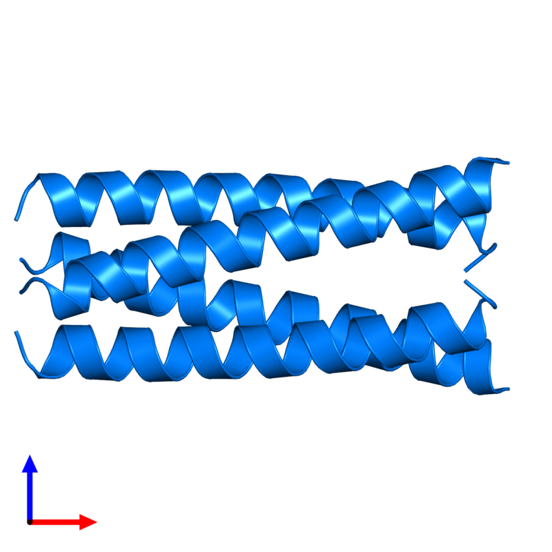 <div class='caption-body'>PDB entry 2cce contains 4 copies of General control transcription factor GCN4 in assembly 1. This protein is highlighted and viewed from the front.</div>