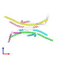 PDB 2cly coloured by chain and viewed from the front.