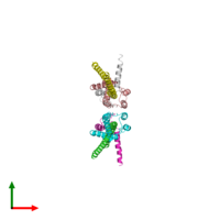 PDB 2cly coloured by chain and viewed from the top.