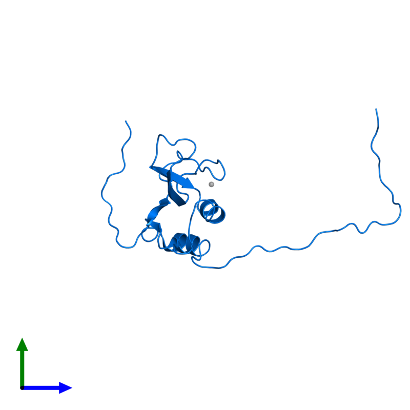 <div class='caption-body'>PDB entry 2cs2 contains 1 copy of Poly [ADP-ribose] polymerase-1 in assembly 1. This protein is highlighted and viewed from the front.</div>