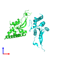 PDB 2dok coloured by chain and viewed from the front.