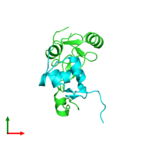 PDB 2dsp coloured by chain and viewed from the top.