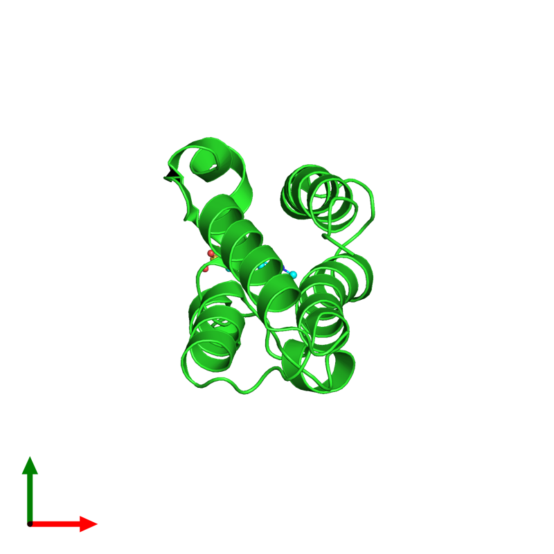 <div class='caption-body'><ul class ='image_legend_ul'>The deposited structure of PDB entry 2dvv coloured by chain and viewed from the top. The entry contains: <li class ='image_legend_li'>1 copy of Bromodomain-containing protein 2</li><li class ='image_legend_li'>There is 1 non-polymeric molecule<ul class ='image_legend_ul'><li class ='image_legend_li'>1 copy of 4-(2-HYDROXYETHYL)-1-PIPERAZINE ETHANESULFONIC ACID</li></ul></li></div>