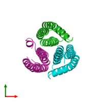 PDB 2e2a coloured by chain and viewed from the top.