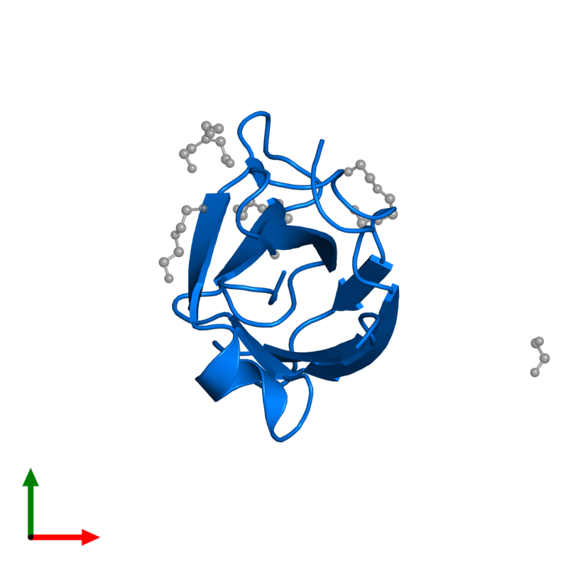 <div class='caption-body'>PDB entry 2e3v contains 1 copy of Neural cell adhesion molecule 1, 140 kDa isoform in assembly 1. This protein is highlighted and viewed from the top.</div>