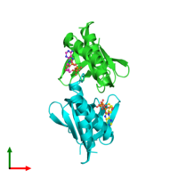 PDB 2e5y coloured by chain and viewed from the top.