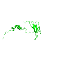 1 copy of CATH domain 2.60.11.10 (Cytochrome C Oxidase; Chain F) in Cytochrome c oxidase subunit 5B, mitochondrial in PDB 2eim.