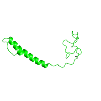 1 copy of SCOP domain 81410 (Mitochondrial cytochrome c oxidase subunit VIa) in Cytochrome c oxidase subunit 6A2, mitochondrial in PDB 2eim.