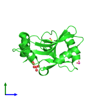 PDB 2fcl coloured by chain and viewed from the side.