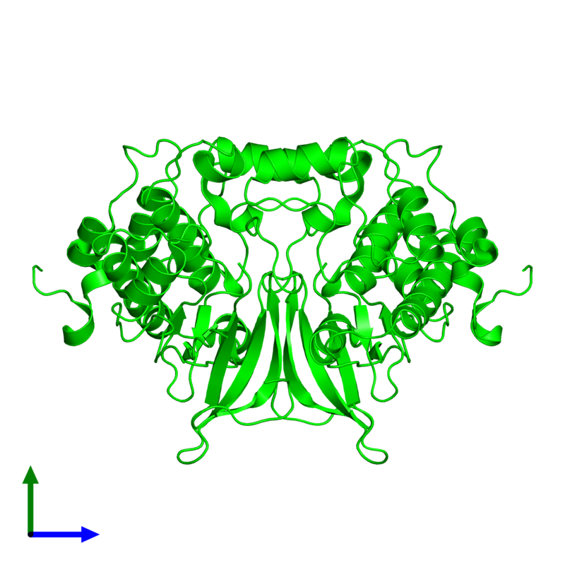 <div class='caption-body'><ul class ='image_legend_ul'> Dimeric assembly 1 of PDB entry 2fh9 coloured by chemically distinct molecules and viewed from the side. This assembly contains:<li class ='image_legend_li'>2 copies of Carbon catabolite-derepressing protein kinase</li></ul></div>