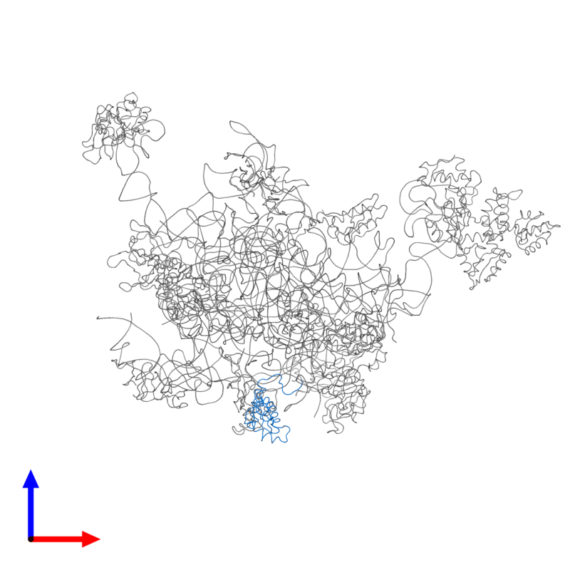 <div class='caption-body'>PDB entry 2ftc contains 1 copy of 39S ribosomal protein L17, mitochondrial in assembly 1. This protein is highlighted and viewed from the front.</div>