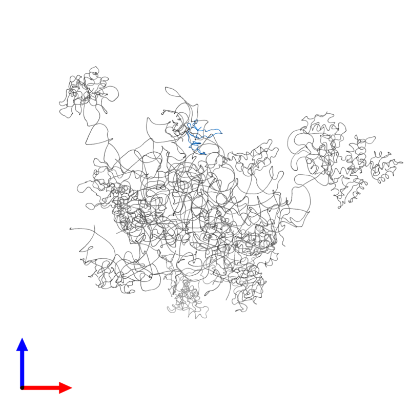 <div class='caption-body'>PDB entry 2ftc contains 1 copy of 39S ribosomal protein L27, mitochondrial in assembly 1. This protein is highlighted and viewed from the front.</div>