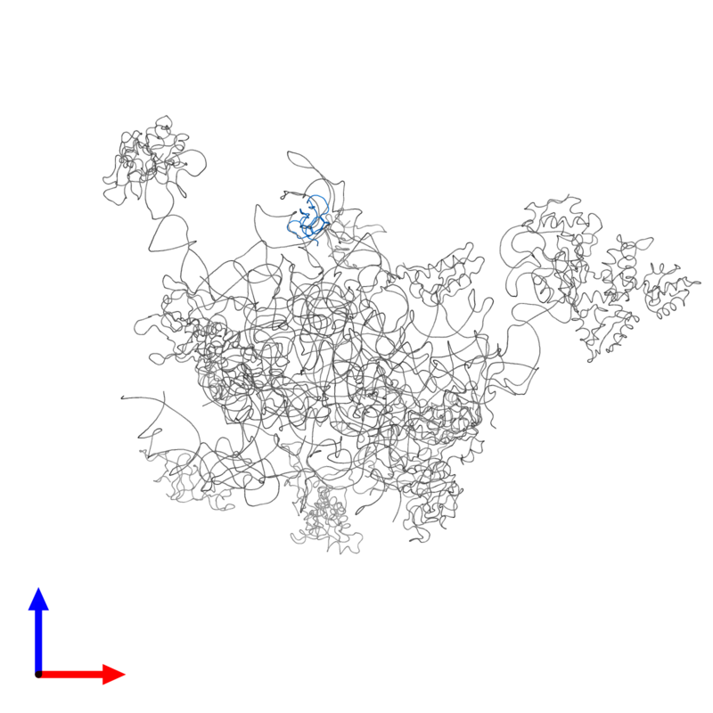 <div class='caption-body'>PDB entry 2ftc contains 1 copy of 39S ribosomal protein L33, mitochondrial in assembly 1. This protein is highlighted and viewed from the front.</div>