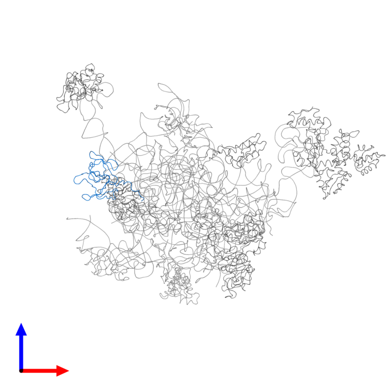<div class='caption-body'>PDB entry 2ftc contains 1 copy of 39S ribosomal protein L2, mitochondrial in assembly 1. This protein is highlighted and viewed from the front.</div>