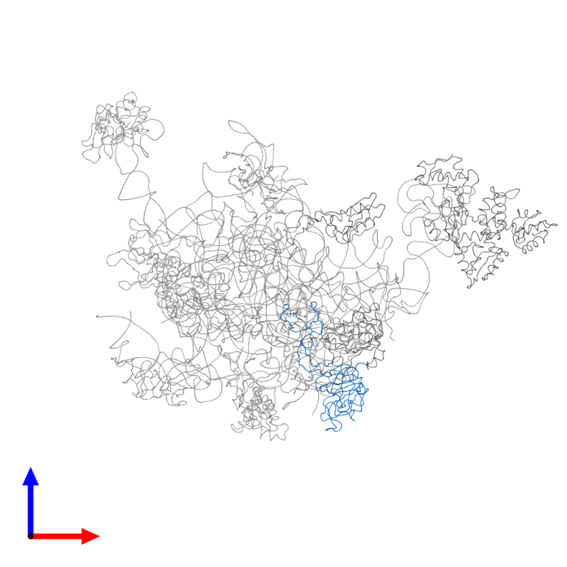 <div class='caption-body'>PDB entry 2ftc contains 1 copy of 39S ribosomal protein L3, mitochondrial in assembly 1. This protein is highlighted and viewed from the front.</div>
