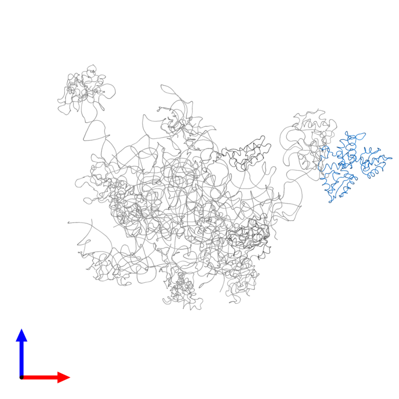 <div class='caption-body'>PDB entry 2ftc contains 2 copies of 39S ribosomal protein L12, mitochondrial in assembly 1. This protein is highlighted and viewed from the front.</div>
