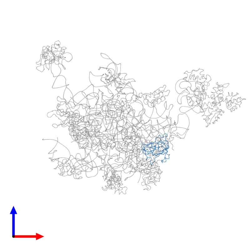 <div class='caption-body'>PDB entry 2ftc contains 1 copy of 39S ribosomal protein L13, mitochondrial in assembly 1. This protein is highlighted and viewed from the front.</div>