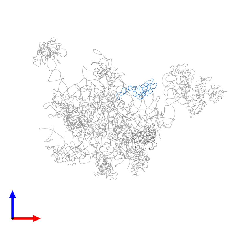 <div class='caption-body'>PDB entry 2ftc contains 1 copy of 39S ribosomal protein L16, mitochondrial in assembly 1. This protein is highlighted and viewed from the front.</div>