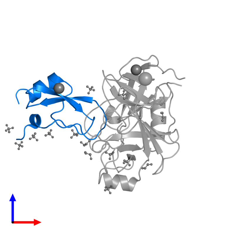 <div class='caption-body'>PDB entry 2ftm contains 1 copy of Pancreatic trypsin inhibitor in assembly 1. This protein is highlighted and viewed from the front.</div>