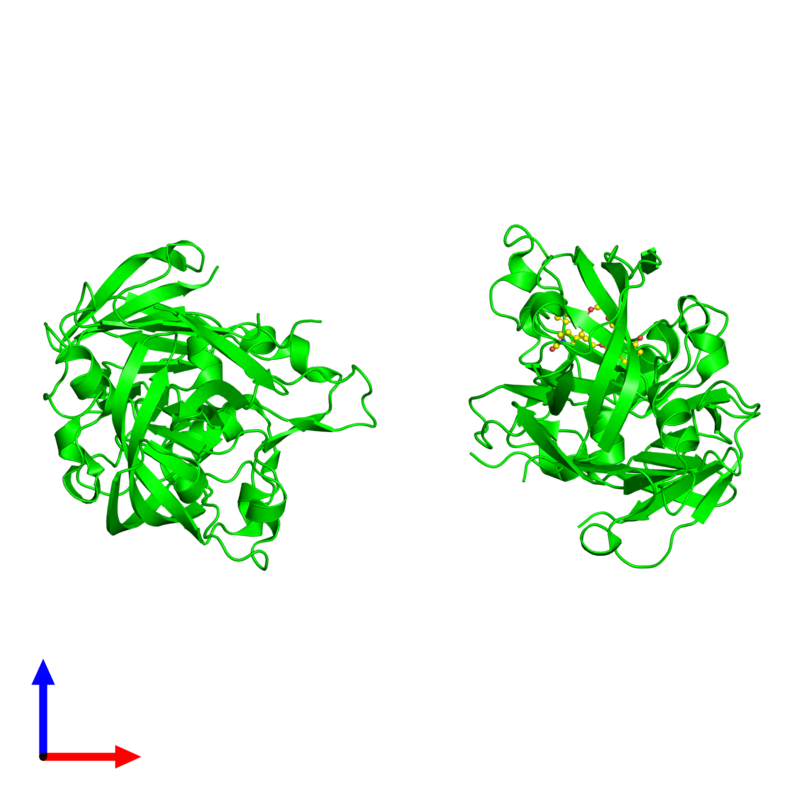 <div class='caption-body'><ul class ='image_legend_ul'>The deposited structure of PDB entry 2g26 coloured by chemically distinct molecules and viewed from the side. The entry contains: <li class ='image_legend_li'>2 copies of Renin</li><li class ='image_legend_li'>There is 1 non-polymeric molecule<ul class ='image_legend_ul'><li class ='image_legend_li'>1 copy of (5-{[(2R)-1-(4-{3-[(2-METHOXYBENZYL)OXY]PROPOXY}PHENYL)-6-OXOPIPERAZIN-2-YL]METHOXY}-1H-INDOL-1-YL)ACETIC ACID</li></ul></li></div>