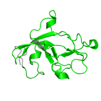 1 copy of Pfam domain PF02975 (Methylamine dehydrogenase, L chain) in Methylamine dehydrogenase light chain in PDB 2gc4.
