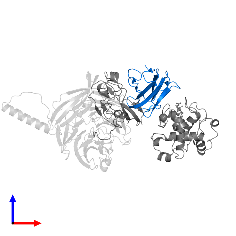 <div class='caption-body'>PDB entry 2gc4 contains 1 copy of Amicyanin in assembly 1. This protein is highlighted and viewed from the front.</div>