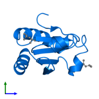 PDB 2h6x contains 1 copy of Thioredoxin 1 in assembly 1. This protein is highlighted and viewed from the side.