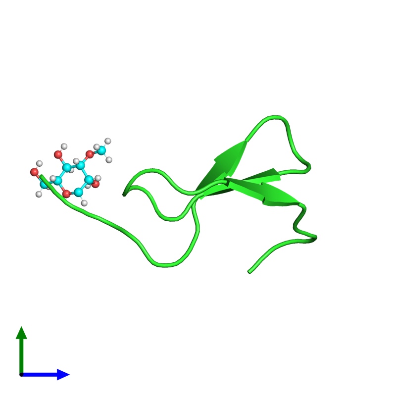 <div class='caption-body'><ul class ='image_legend_ul'>The deposited structure of PDB entry 2hgo coloured by chain and viewed from the side. The entry contains: <li class ='image_legend_li'>1 copy of Cassiicolin</li><li class ='image_legend_li'>There is 1 non-polymeric molecule<ul class ='image_legend_ul'><li class ='image_legend_li'>1 copy of 1,5-anhydro-3-O-methyl-D-mannitol</li></ul></li></div>