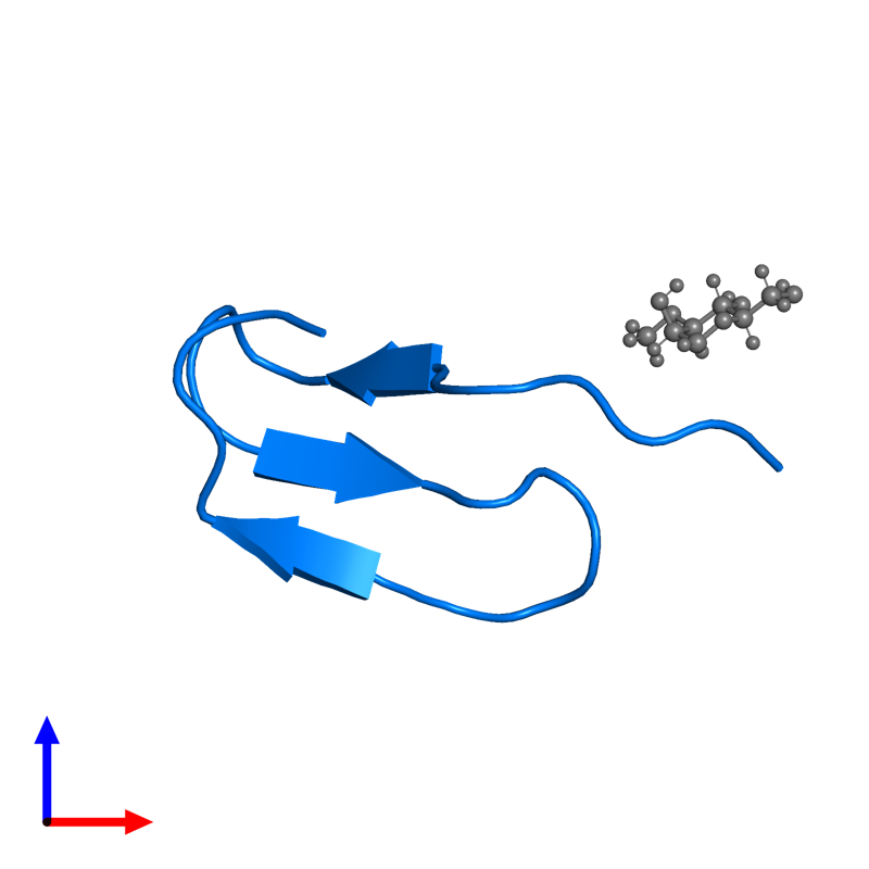 <div class='caption-body'>PDB entry 2hgo contains 1 copy of Cassiicolin in assembly 1. This protein is highlighted and viewed from the front.</div>