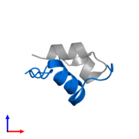 PDB 2hh4 contains 1 copy of Insulin B chain in assembly 1. This protein is highlighted and viewed from the side.