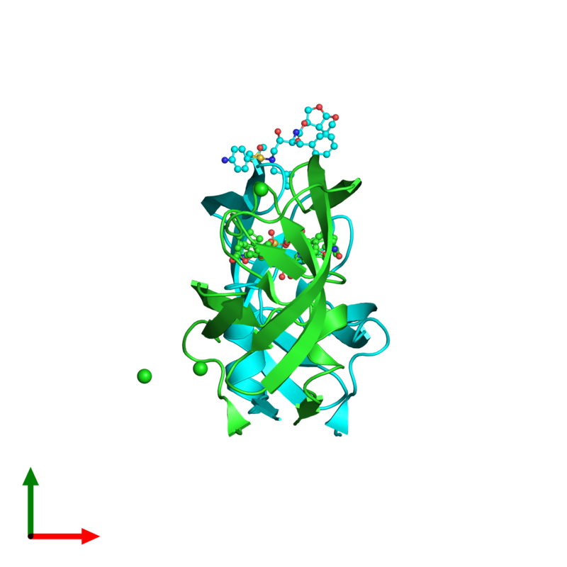 <div class='caption-body'><ul class ='image_legend_ul'>The deposited structure of PDB entry 2hs1 coloured by chain and viewed from the top. The entry contains: <li class ='image_legend_li'>2 copies of Protease</li><li class ='image_legend_li'>3 non-polymeric entities<ul class ='image_legend_ul'><li class ='image_legend_li'>3 copies of CHLORIDE ION</li><li class ='image_legend_li'>2 copies of (3R,3AS,6AR)-HEXAHYDROFURO[2,3-B]FURAN-3-YL(1S,2R)-3-[[(4-AMINOPHENYL)SULFONYL](ISOBUTYL)AMINO]-1-BENZYL-2-HYDROXYPROPYLCARBAMATE</li><li class ='image_legend_li'>1 copy of DIMETHYL SULFOXIDE</li></ul></li></div>