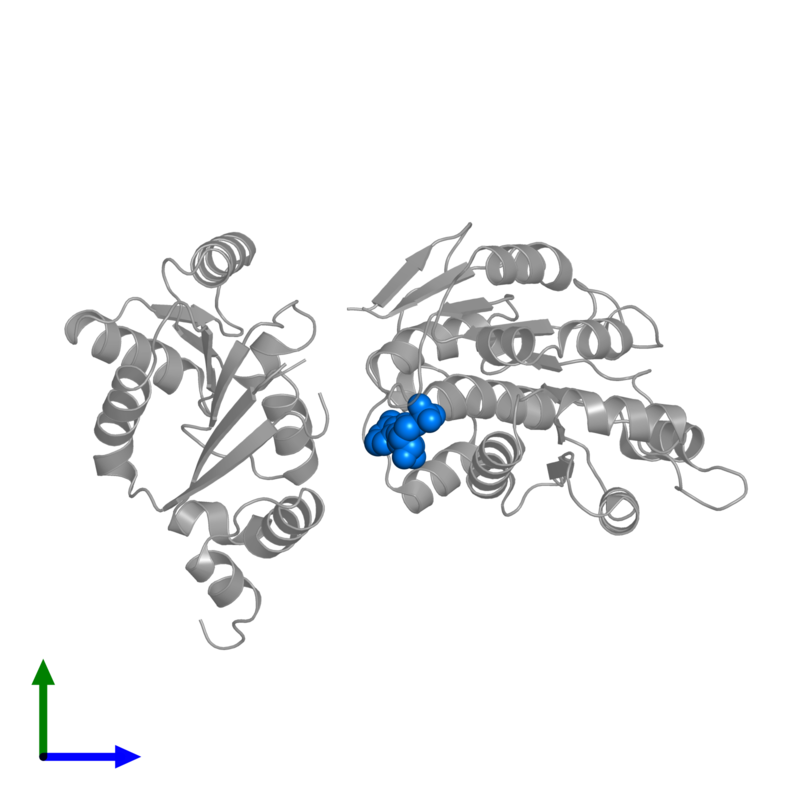 <div class='caption-body'>PDB entry 2i4i contains 1 copy of ADENOSINE MONOPHOSPHATE in assembly 1. This small molecule is highlighted and viewed from the front.</div>