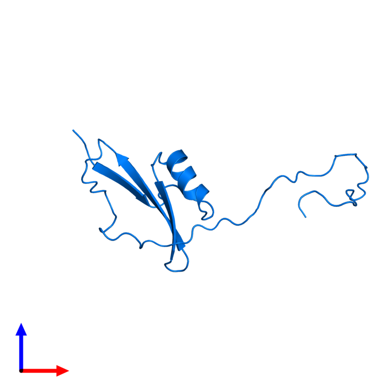 <div class='caption-body'>PDB entry 2kpy contains 1 copy of Major pollen allergen Art v 1 in assembly 1. This protein is highlighted and viewed from the front.</div>