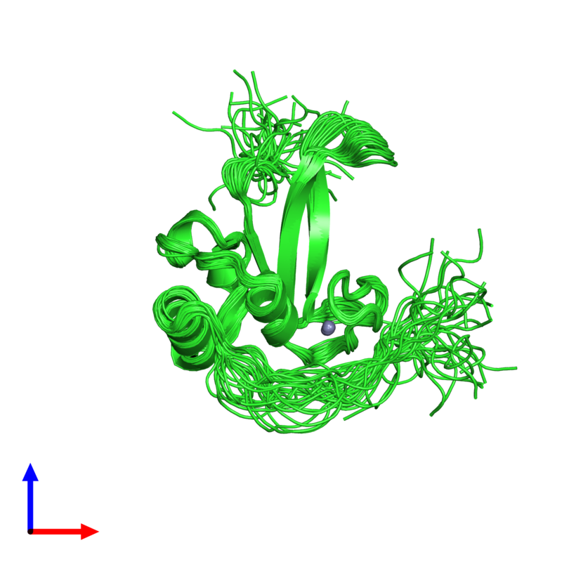 <div class='caption-body'><ul class ='image_legend_ul'>The deposited structure of PDB entry 2l30 coloured by chain and viewed from the front. The entry contains: <li class ='image_legend_li'>1 copy of Poly [ADP-ribose] polymerase 1</li><li class ='image_legend_li'>There is 1 non-polymeric molecule<ul class ='image_legend_ul'><li class ='image_legend_li'>1 copy of ZINC ION</li></ul></li></div>