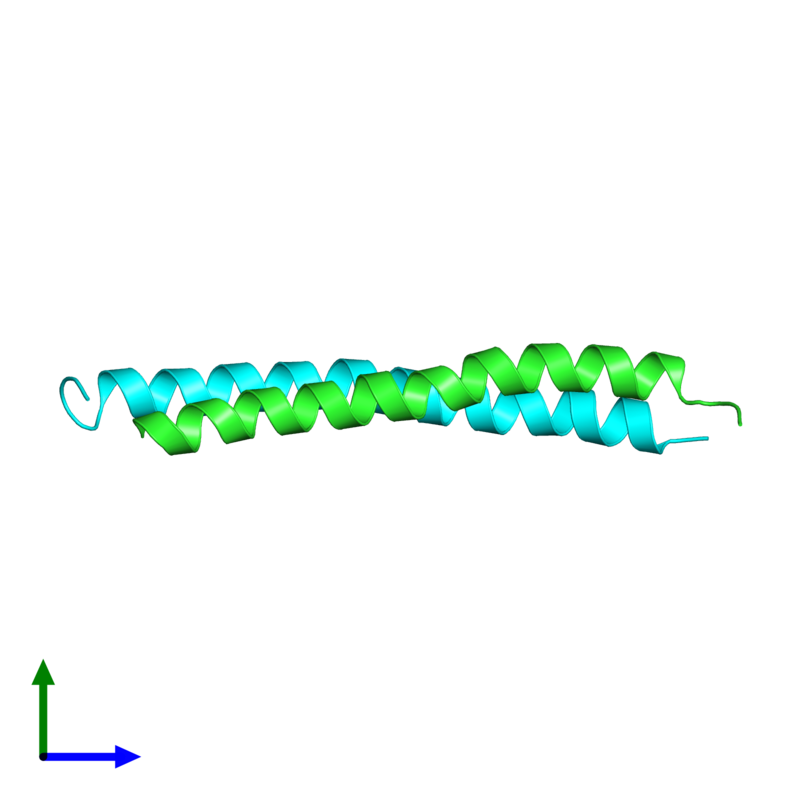 <div class='caption-body'><ul class ='image_legend_ul'> Dimeric assembly 1 of PDB entry 2l5g coloured by chain and viewed from the side. This assembly contains:<li class ='image_legend_li'>One copy of G protein pathway suppressor 2</li><li class ='image_legend_li'>One copy of Putative uncharacterized protein NCOR2</li></ul></div>