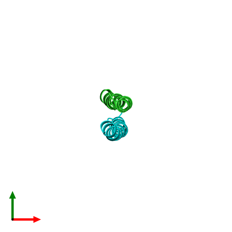 <div class='caption-body'><ul class ='image_legend_ul'> Dimeric assembly 1 of PDB entry 2l5g coloured by chain and viewed from the top. This assembly contains:<li class ='image_legend_li'>One copy of G protein pathway suppressor 2</li><li class ='image_legend_li'>One copy of Putative uncharacterized protein NCOR2</li></ul></div>