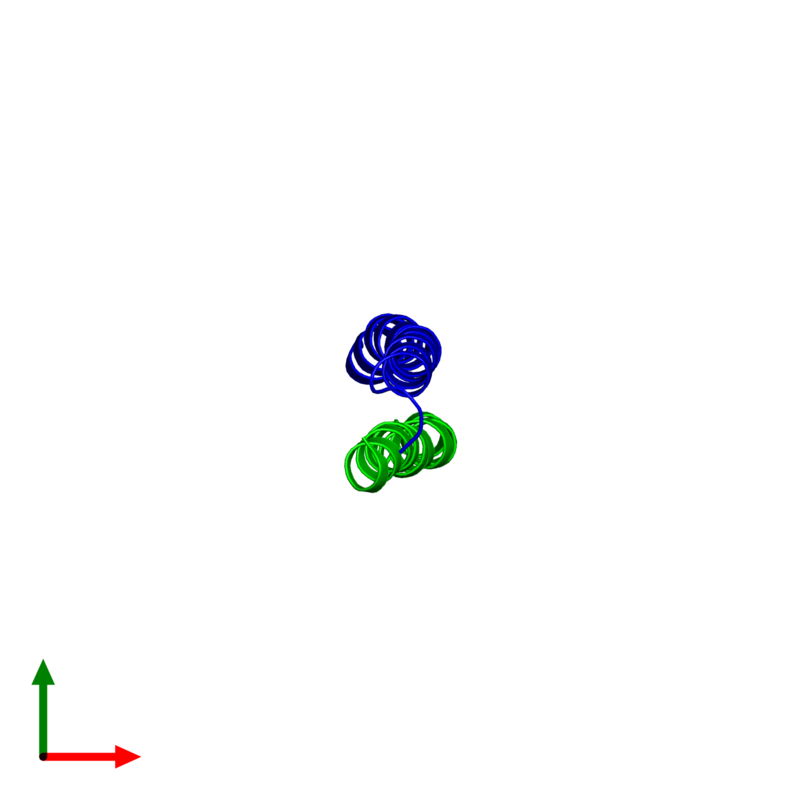 <div class='caption-body'><ul class ='image_legend_ul'> Dimeric assembly 1 of PDB entry 2l5g coloured by chemically distinct molecules and viewed from the top. This assembly contains:<li class ='image_legend_li'>One copy of G protein pathway suppressor 2</li><li class ='image_legend_li'>One copy of Nuclear receptor corepressor 2</li></ul></div>